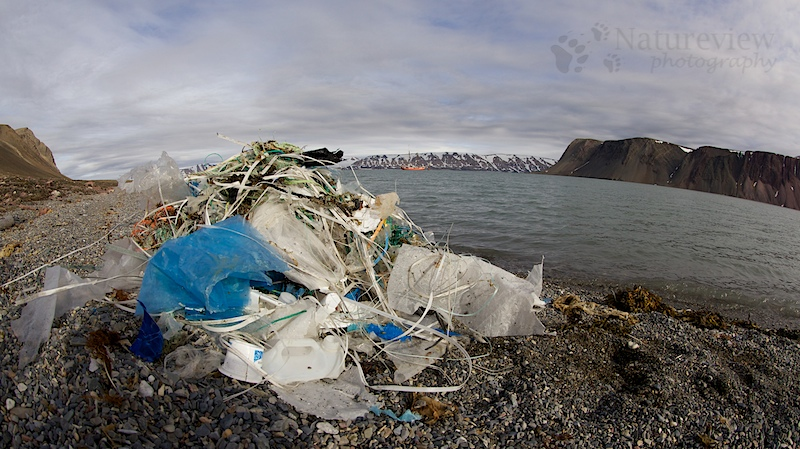 Garbage in the high Arctic