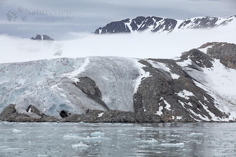 Hamiltonbukta, Spitsbergen