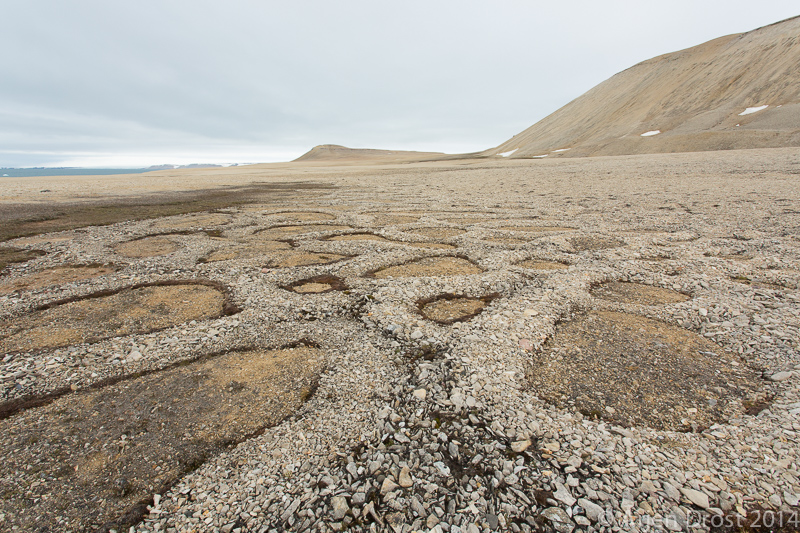 Stone circles in Palanderbukta