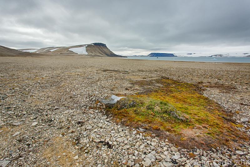 Palanderbukta, Spitsbergen