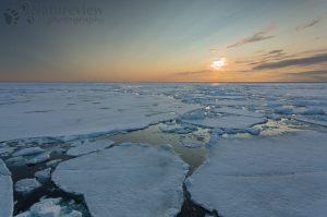 Midnight sun over the pack ice