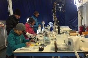 Marine laboratory on board Ortelius