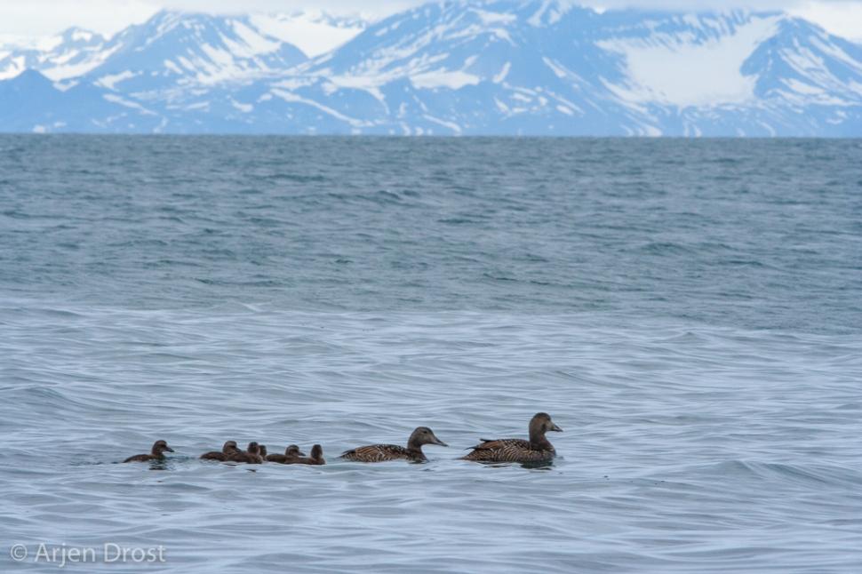 20070714_longyearbyen_003.jpg